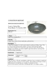thumbnail of Condition-Report-Example-2
