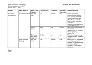 thumbnail of RCO-risk-assessment-example-1