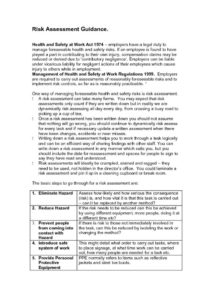 thumbnail of Risk-Assessment-Guidance